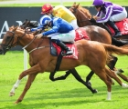 Dubawi's Wuqood a New Rising Star At Gowran, 12 08 2020, IRE