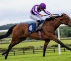 mother-earth-coolmore-prospect-for-stallion-zoffany-uk-13-08-2020