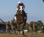 tiz-the-law-ready-for-kentucky-derby