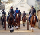 David-Lanigan-right-rides-out-with-his-string-in-newmarket-04-04-2020