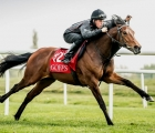 Goffs Breeze Up Sale training, may 4th 2020