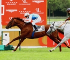 Shaman vince il Prix d'Harcourt secondo è lo splendido Way To Paris Longchamp 11-05-2020
