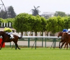The Summit heads for the home in the Prix de Fontainebleau, Longchamp 11 05 2020