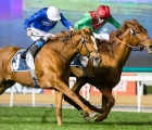 Magic Lily-cape-verdi-2020-gen-15-day-3-meydan