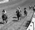nijinsky-winning-derby