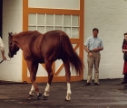 Queen and Secretariat -1977