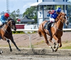bull-of-wall-street-wins-the-swedish-derby-12-luglio-2020