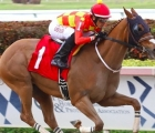 Mi Tres Por Ciento, cavallo cileno che ha vinto il 17 aprile 2020 a Gulfstream Park (Florida) al debutto americano, una Allowance Optional Claiming Race (Ocean Terrace)