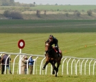 Training at Newmarket 23 04 2020
