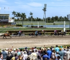 Gulfstream Park 2020: end-of-race-elevated-view