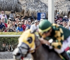 Gulfstream Park 2020: fans-watch-as-horses-head-toward-finish