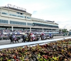 Gulfstream Park 2020: start-of-the-florida-derby