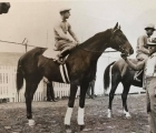 This-is-a-1934-photo-of-Cavalcade-prior-to-winning-the-1934-kentucky-derby-after-his-victory-he-would-be-on-the-cover-of-time-magazine