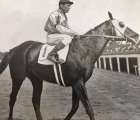 This a 1934 photo of Equipoise with Sonny Workman up having won the Metropolitan Handicap only to be disqualified for lugging into Mr. Khayyam on the rail causing his jockey Bobby Jones to take up on him, thereby losing