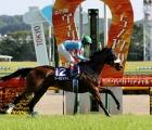 Almond-Eye-victoria-mile-17-maggio-2020-tokyo