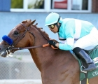 Charlatan-is-among-the-favourites-for-the-kentucky-derby-17-maggio-2020