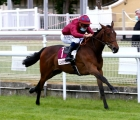 Cherie Amour (Fr) (Shalaa {Ire}) at Clairefontaine is the first winner for her Haras de Bouquetot, 04 06 2020
