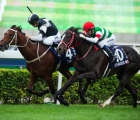 Exultant-sha-tin-racecourse-is-the-last-of-12-group-1-in-hong-kong-23-maggio-2020