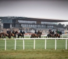 The-curragh-horses-in-training-16-05-2020