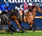 Diamond Effort ridden by Ben Melham wins the Neds The Heath 1100 Stakes  at Caulfield Racecourse on August 29, 2020 in Caulfield, Australia. (Pat Scala/Racing Photos)