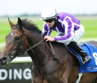 high-definition-curragh-ire-22-08-2020