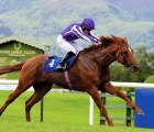 san-martino-coolmore-prospect-august-2020