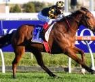 six-weekend-winners-for-casino-aus-31-08-2020
