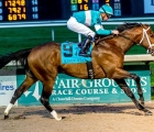 Modernist-made-his-stakes-debut-a-winning-one-in-the-second-division-of-the-risen-star-usa-19-02-2020