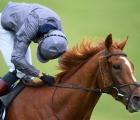 Galileo's Serpentine Dominates the Derby, UK luglio 2020