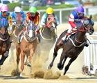 korea-busan-turn-of-a-race-3-luglio-2020
