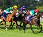 Mick Halford has a strong hand in Wednesday's 1st july pattern races at Leopardstown, is Ridenza