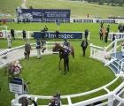 serpentine-in-the-epson-derby-winners-enclosure-uk-july
