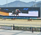 The weekend's racing gets underway at Busan on Friday 10 07 2020, KRA