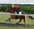 enable-in-training-before-the-king-george-23-luglio-2020-uk