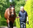 galileo-stallion-07-06-2020-father-of-love