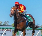 at-flemington-wisdom-of-water-headwater-is-engaged-in-the-danehill-stakes-gr-2-vinery-stud-aus-11-09-2020