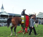 authentic-draws-nine-for-preakness-usa-28-09-2020
