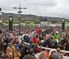 epatante-and-barry-geraghty-return-after-winning-the-champion-hurdle-cheltenham-10-03-2020