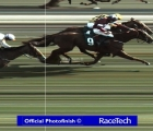 fotofinish-with-samcro-that-edges-out-melon-cheltenham-12-03-2020