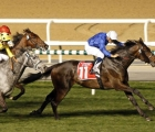 loxley-beates-g1-winner-defoe-in-g2-dubai-city-of-gold-sponsored-by-emirates-sky-cargo-at-meydan-uae-on-super-saturday-7-march