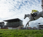 politologue-in-the-champion-chase-cheltenham-11-03-2020