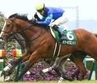 tower-of-london-finish-third-on-his-appearance-in-the-g3-ocean-stakes-over-six-furlongs-at-nakayama-japan-on-saturday-7-march