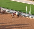 6-12-19_Riyadh_king_abdulaziz_racetrack
