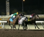 USA-shoplifted-bags-springboard-mile-road-to-kentucky-derby