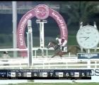 21 10 2020. Per Luca Maniezzi prima vittoria in Qatar, il cavallo è Wadhah