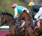 enable-and-stradivarius-finish-unplaced-in-the-arc-with-the-ground-and-pace-to-blame-04-10-2020-fra-longchamp