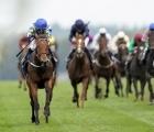 Planteur's Trueshan Routs Long Distance Cup Rivals, 18 10 2020, UK