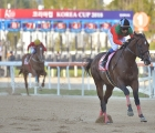 london-town-with-dolkong-a-distance-2nd-pic-ross-holburtkorea-racing-authority-2018