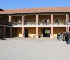 Presentazione degli stalloni nella corte dell'Azienda Agricola Razza Ticino